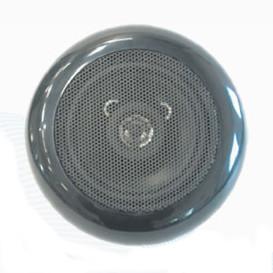 BCN931B Głośnik wodoodporny czarny 70W